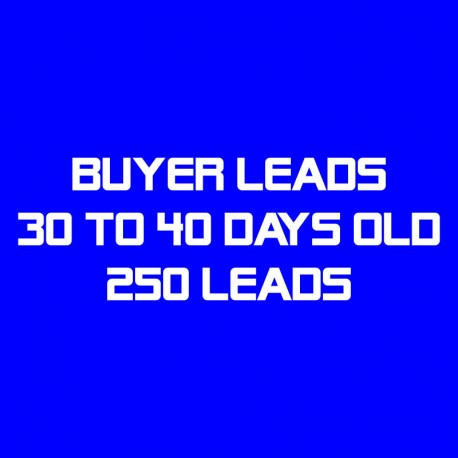 Buyer Leads-30-40 Days Old-250 Leads