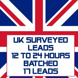UK Surveyed Leads-12-24 Hours Batched-17 Leads